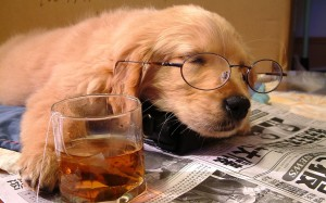 tired_dog